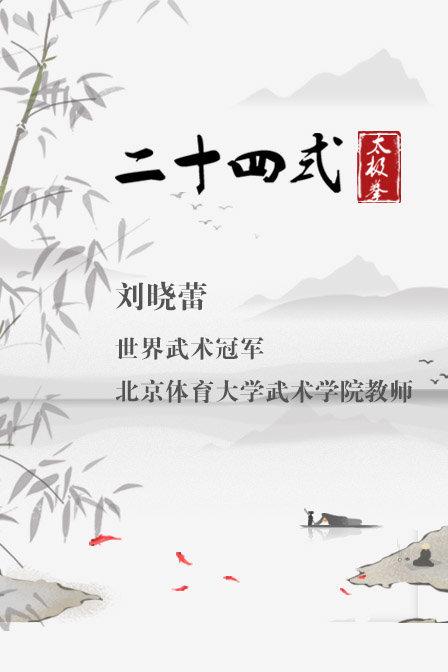 世界武術冠軍劉曉蕾二十四式太極拳