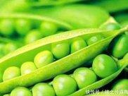 想长寿得会吃,常吃以下4种食物,健胃消食,排毒润肠,预防衰老